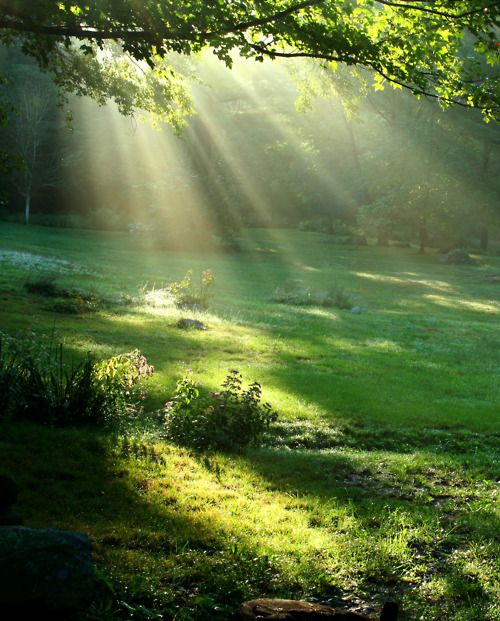 2c05d796c99624fc196a8dd6600063d2--sun-rays-sunlight